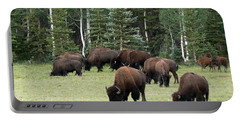 Bison At North Rim Portable Battery Charger
