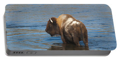 Bison Crossing River Portable Battery Charger