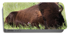 Portable Battery Charger featuring the photograph Bison Nap by Alyce Taylor