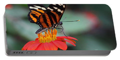 Black And Brown Butterfly On A Red Flower Portable Battery Charger