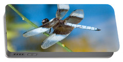 Portable Battery Charger featuring the photograph Black And White Dragonfly by Mae Wertz