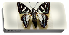 Portable Battery Charger featuring the photograph Black And White Moth by Rosalie Scanlon