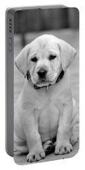 Black And White Puppy Portable Battery Charger
