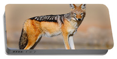 Black-backed Jackal Portable Battery Charger
