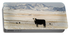 Black Baldy Cows Portable Battery Charger by Sue Smith