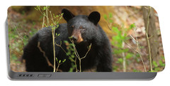 Portable Battery Charger featuring the photograph Black Bear by Geraldine DeBoer