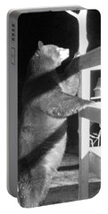 Portable Battery Charger featuring the photograph Black Bear by Mim White