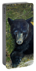 Portable Battery Charger featuring the painting  Bear Painting - Scruffy - Profile Cropped by Jan Dappen