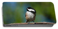 Black Capped Chickadee Perched On A Branch Portable Battery Charger