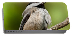 Black Capped Chickadee Singing Portable Battery Charger