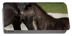 Black Foal Portable Battery Charger