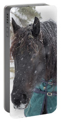Black Horse In Snow Portable Battery Charger