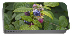 Black Raspberry Portable Battery Charger by Venetia Featherstone-Witty