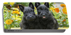 Black Scotties Portable Battery Charger