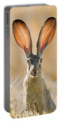 Black-tailed Hare Davis California Portable Battery Charger