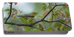 Blackpoll Warbler In The Fall Portable Battery Charger