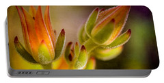 Blooming Succulents Iv Portable Battery Charger