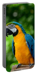 Blue And Yellow Gold Macaw Parrot Portable Battery Charger
