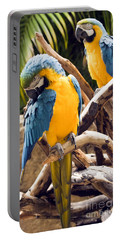 Blue And Yellow Macaw Pair Portable Battery Charger
