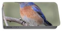 Blue Bird At Sedona Portable Battery Charger