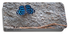 Blue Butterfly Myscelia Ethusa Art Prints Portable Battery Charger