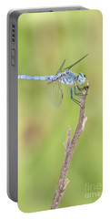 Portable Battery Charger featuring the photograph Blue Dasher by Bryan Keil