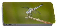 Portable Battery Charger featuring the photograph Blue Dasher On The Edge by Bryan Keil