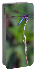 Blue Dragonfly On A Blade Of Grass  Portable Battery Charger by Chris Flees