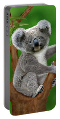 Blue-eyed Baby Koala Portable Battery Charger
