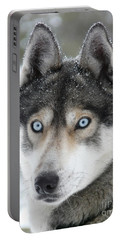 Blue Eyes Husky Dog Portable Battery Charger