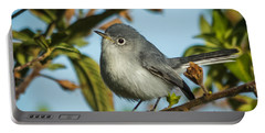 Blue-gray Gnatcatcher Portable Battery Charger by Jane Luxton