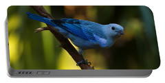 Blue Grey Tanager Portable Battery Charger by Chris Flees
