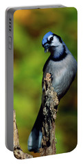 Blue Jay Bird On Perch Portable Battery Charger