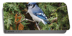 Portable Battery Charger featuring the photograph Blue Jay In Cedar Tree by Brenda Brown