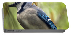 Blue Jay On A Misty Spring Day - Square Format Portable Battery Charger by Lois Bryan