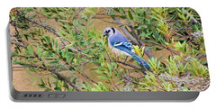 Blue Jay On Southern Wax Myrtle Portable Battery Charger
