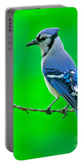 Blue Jay On The Fence Portable Battery Charger by Robert Frederick