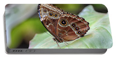 Portable Battery Charger featuring the photograph Blue Morpho Butterfly by Teresa Zieba