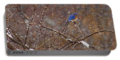 Portable Battery Charger featuring the photograph Blue Norther by Gary Holmes