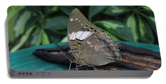 Blue-spotted Charaxes Butterfly Portable Battery Charger
