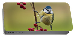 Blue Tit With Hawthorn Berries Portable Battery Charger