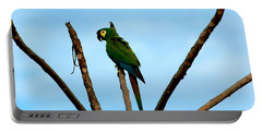 Blue-winged Macaw, Brazil Portable Battery Charger