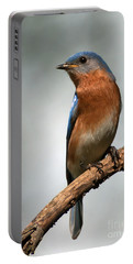 Bluebird- I See You Portable Battery Charger