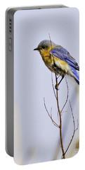 Bluebird Portable Battery Charger