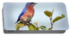 Bluebird On Top Portable Battery Charger by Kerri Farley