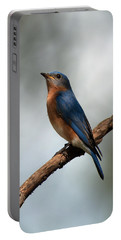 Bluebird -why Yes Portable Battery Charger