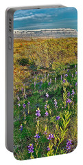 Bluebonnets And Creosote Bushes In Big Bend National Park-texas Portable Battery Charger