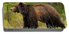 Bluetooth Grizzly 2 Portable Battery Charger