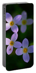 Portable Battery Charger featuring the photograph Bluets With Aphid by Marty Saccone