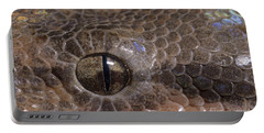Boa Constrictor Portable Battery Charger by Chris Mattison FLPA